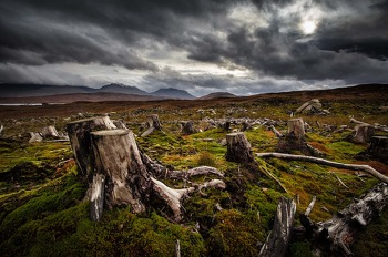 Rannoch Moor, beauty and destruction